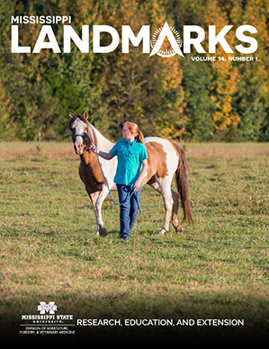Landmarks Vol 14 No 1 cover.