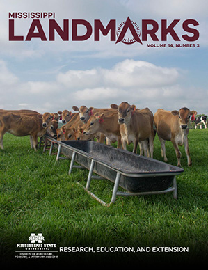 Landmarks Vol 14 No 3 cover.