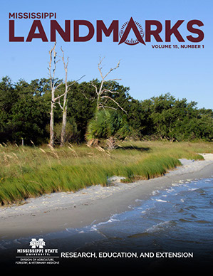Landmarks Vol 15 No 1 cover.