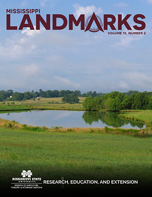 Landmarks Vol 15 No 2 cover.