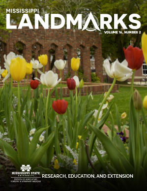 Landmarks Vol 16 No 2 cover.