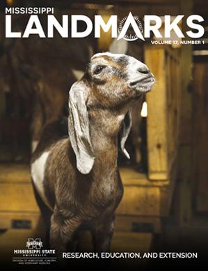 Landmarks Vol 17 No 1 cover.